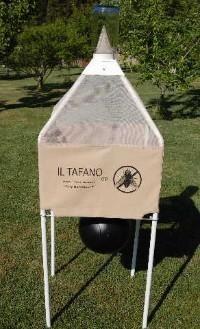 Tr taf trappola per tafani il tafano chimera ambiente for Trappola piccioni
